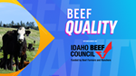 Beef Quality Image 600x338